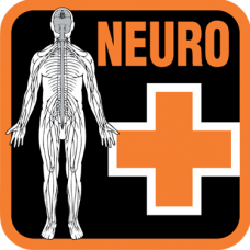 On-Site Neurological Assessment for Divers (NEURO)